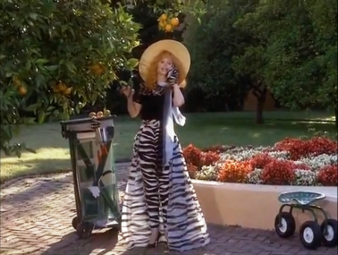 Troop Beverly Hills Animal Zebra Print Trousers Skirt Wide Brimmed Summer Yellow Hat Gloves