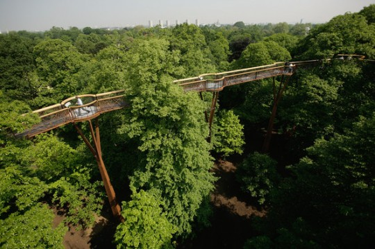 Rhizotron and Xstrata Treetop Walkway at Kew Gardens