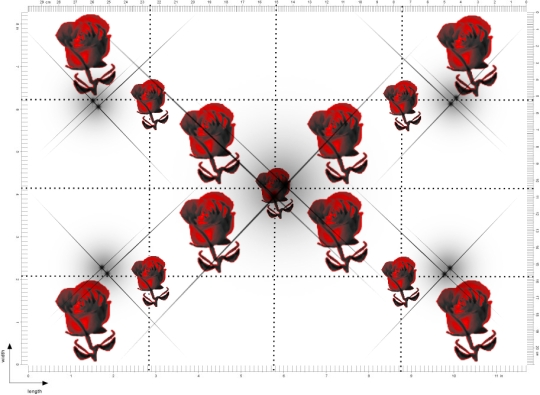 Roses-stars9