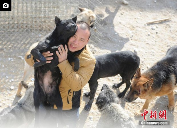Chang Chun saves dogs from slaughterhouses