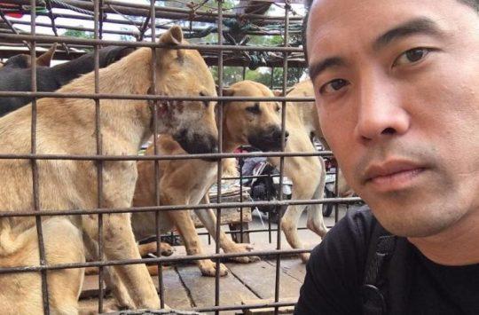 Marc Ching Animal Activist