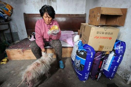 Yang Xiaoyun Teacher Saves Dogs Yulin Meat Festival 8