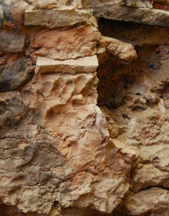 This six-toed footprint was found in the south wall plaster of a room in Pueblo Bonito. The plaster is discolored from a fire. - Photograph by Patricia L. Crown