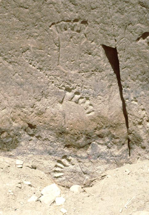 6-toed footprints behind Pueblo Bonito, Chaco Canyon, NM. Photo: 1994, Peter Faris.