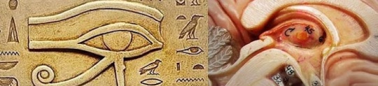 cradles of civilization Egyptian eye symbolism hieroglyphs implants reptillians vril droning alien consciousness microchips possession technology